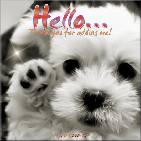 Hello thank you for adding me | Tagarooz.com