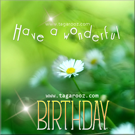 Have a wonderful Birthday | Tagarooz.com