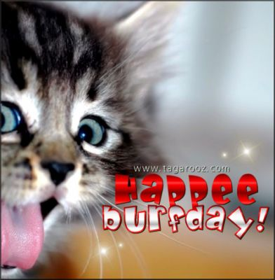 Happee Burfday | Tagarooz.com