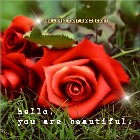 Hello. You are beautiful | Tagarooz.com