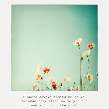 Flowers Always Remind Me of You | Compliment Comments and Graphics