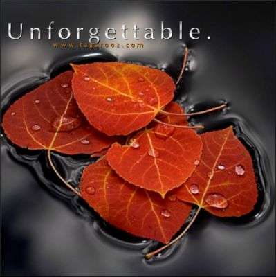 Unforgettable | Tagarooz.com