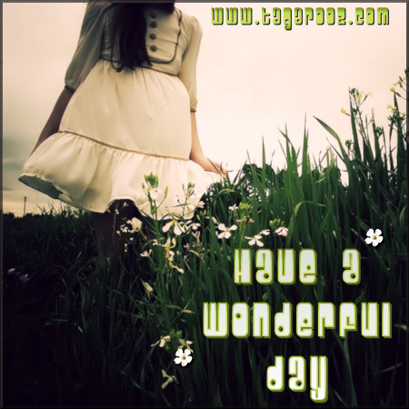 Have a wonderful day | Tagarooz.com