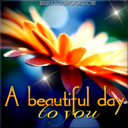 A beautiful day to you | Tagarooz.com