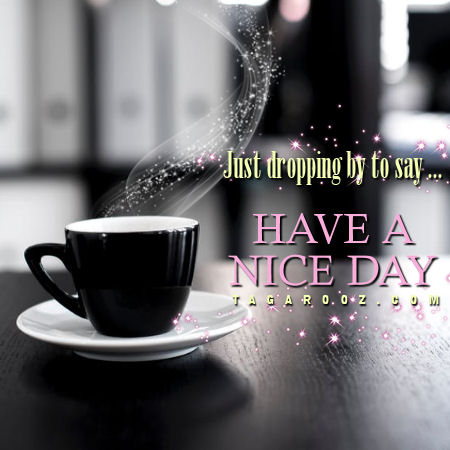 Just dropping by to say have a nice day | good day comments and graphics
