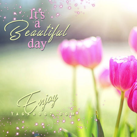 It's a beautiful day Enjoy | good day comments and graphics