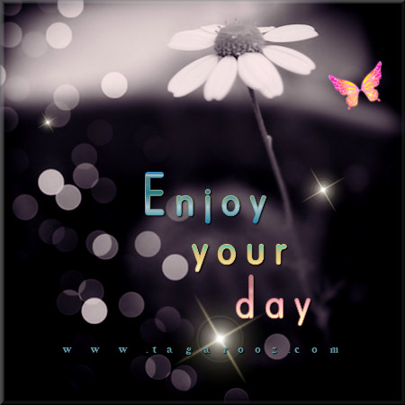 Enjoy your day | Tagarooz.com