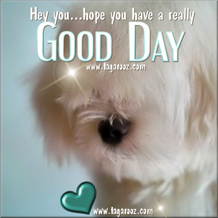 Hey you, hope you have a really good day | Tagarooz.com
