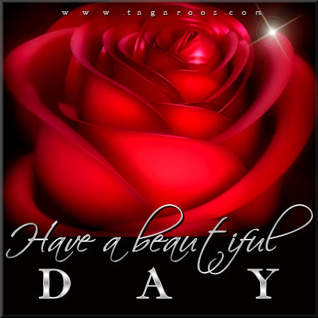 Have a beautiful day | Tagarooz.com