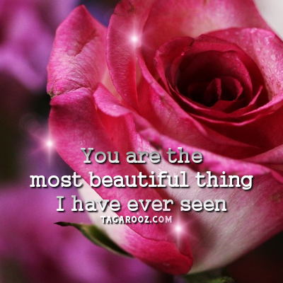 You are the most beautiful thing I have ever seen | Flirty Comments and Graphics - Tagarooz.com
