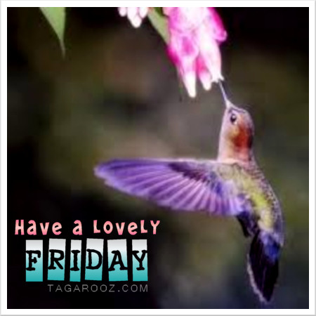 Have a lovely Friday | Friday Comments - Tagarooz.com