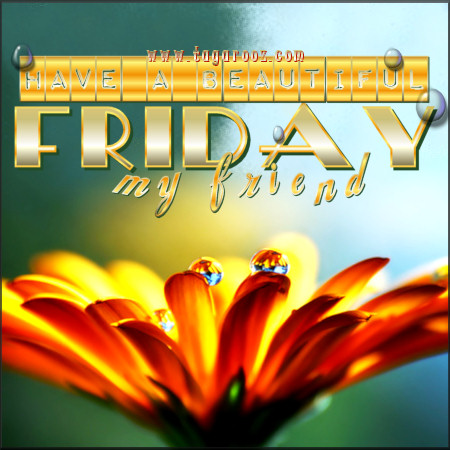 Friday Comments