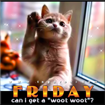 Friday can I get a 'woot woot'? | Tagarooz.com