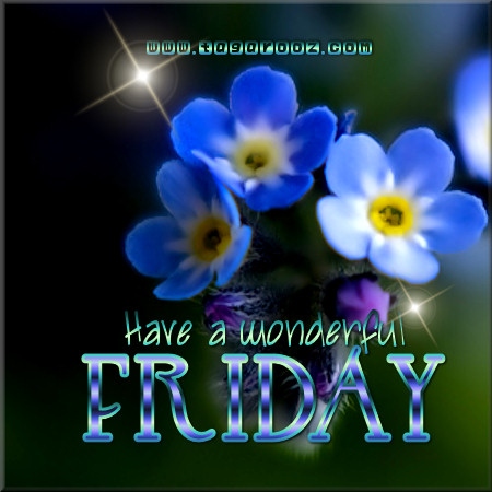 Have a wonderful Friday | Tagarooz.com