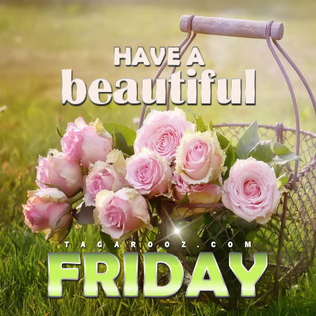 Have a beautiful Friday | Friday Comments - Tagarooz.com