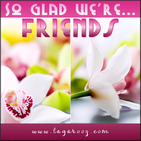 So glad we're friends | Tagarooz.com