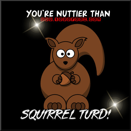 You're nuttier than squirrel turd! | Tagarooz.com
