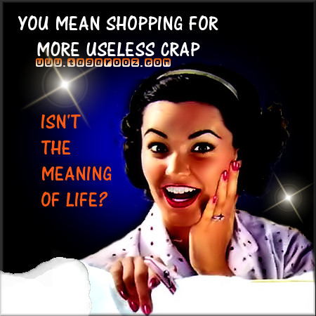 You mean shopping for more useless crap isn't the meaning of life? | Tagarooz.com