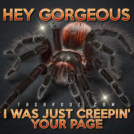 Hey Gorgeous I Was Just Creepin Your Page - Hello Comments and Graphics | Tagarooz.com