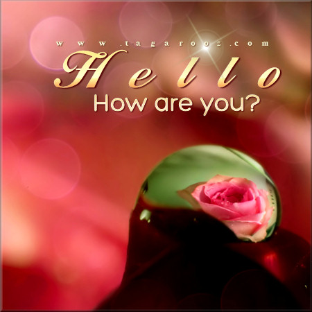Hello how are you? | Tagarooz.com