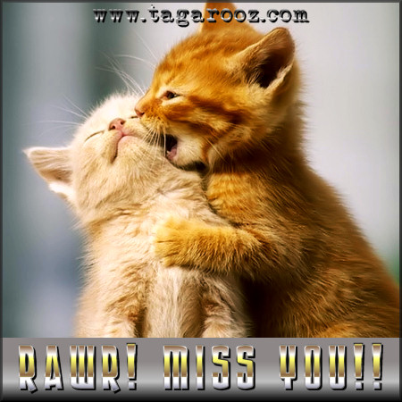 Rawr! Miss you! | Tagarooz.com