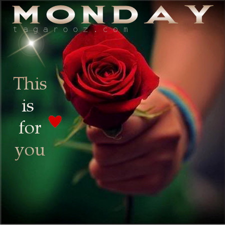 Monday this is for you | Tagarooz.com