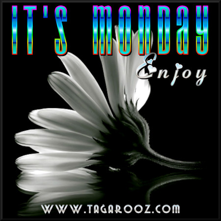 It's Monday. Enjoy | Tagarooz.com