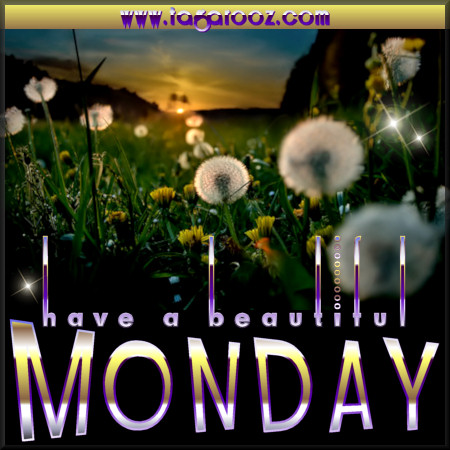 Have a beautiful Monday | Tagarooz.com