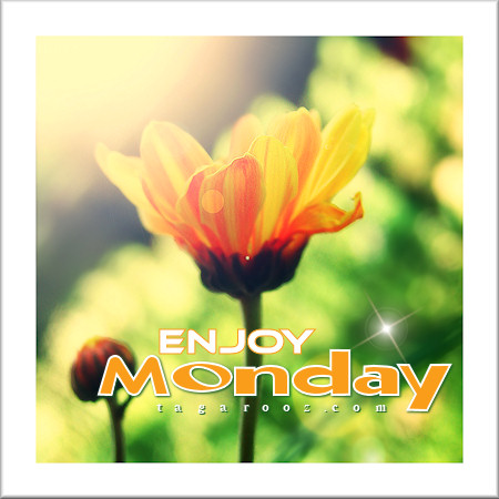 Enjoy Monday | Tagarooz.com