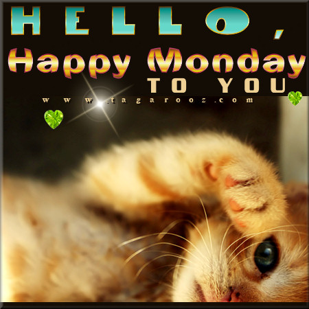 Hello Happy Monday to You | Cute Monday Comments and Graphics - Tagarooz.com