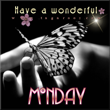 Have a wonderful Monday  | Monday Comments & Graphics