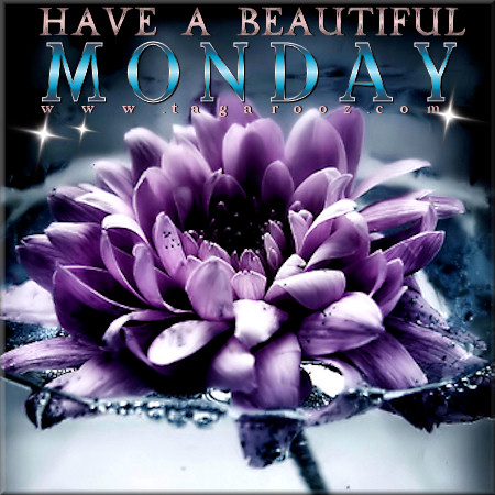 Have a beautiful Monday | Monday Comments & Graphics