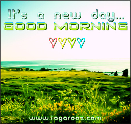 It's a new day...good morning! | Tagarooz.com