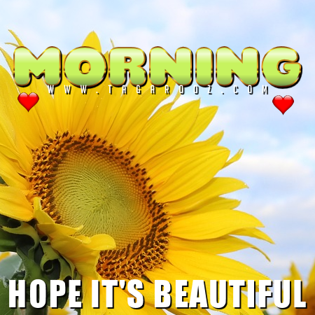 Morning Hope It's Beautiful | Tagarooz.com
