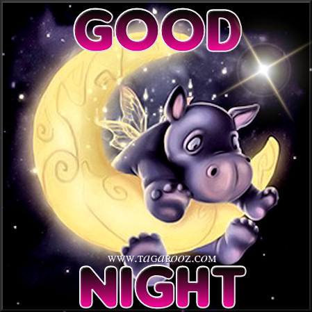 Good Night | Tagarooz.com
