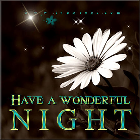 Have a wonderful night | Tagarooz.com