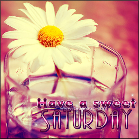 Have a sweet Saturday | Tagarooz.com