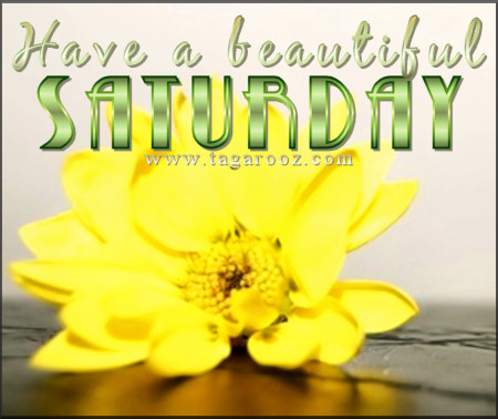 Have a beautiful Saturday | Tagarooz.com