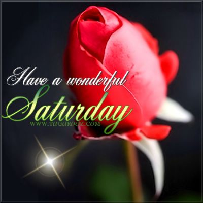 Have a wonderful Saturday | Tagarooz.com