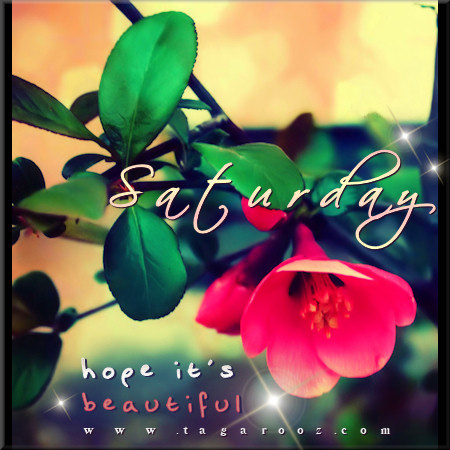 Saturday hope it's beautiful