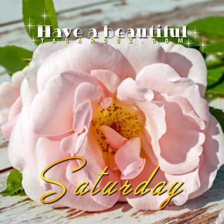 Have a beautiful Saturday | Saturday Comments and Graphics