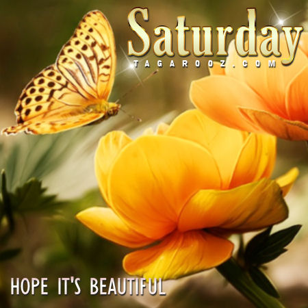 Saturday hope it's beautiful | Saturday Comments and Graphics