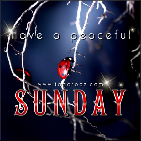 Have a peaceful Sunday | Tagarooz.com