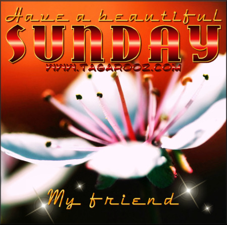 Have a beautiful Sunday my friend | Tagarooz.com