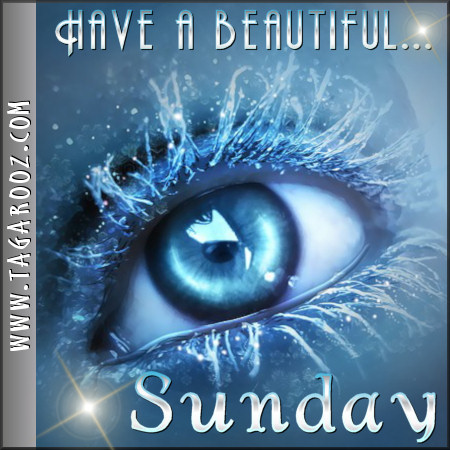 Have a beautiful Sunday | Tagarooz.com