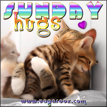 Sunday Hugs | Tagarooz.com
