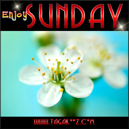 Enjoy Sunday | Tagarooz.com
