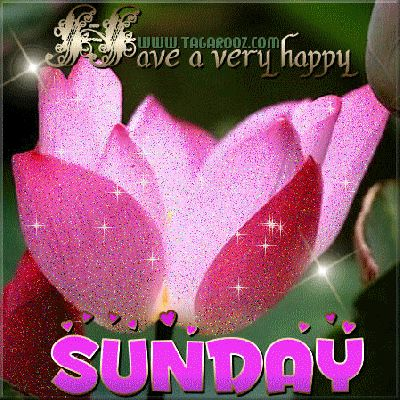 Have a very happy Sunday
