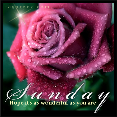 Sunday hope it's as wonderful as you are