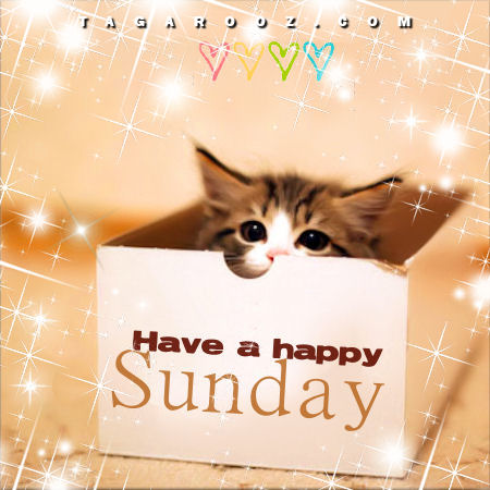 Have a Happy Sunday | Sunday Comments and Graphics